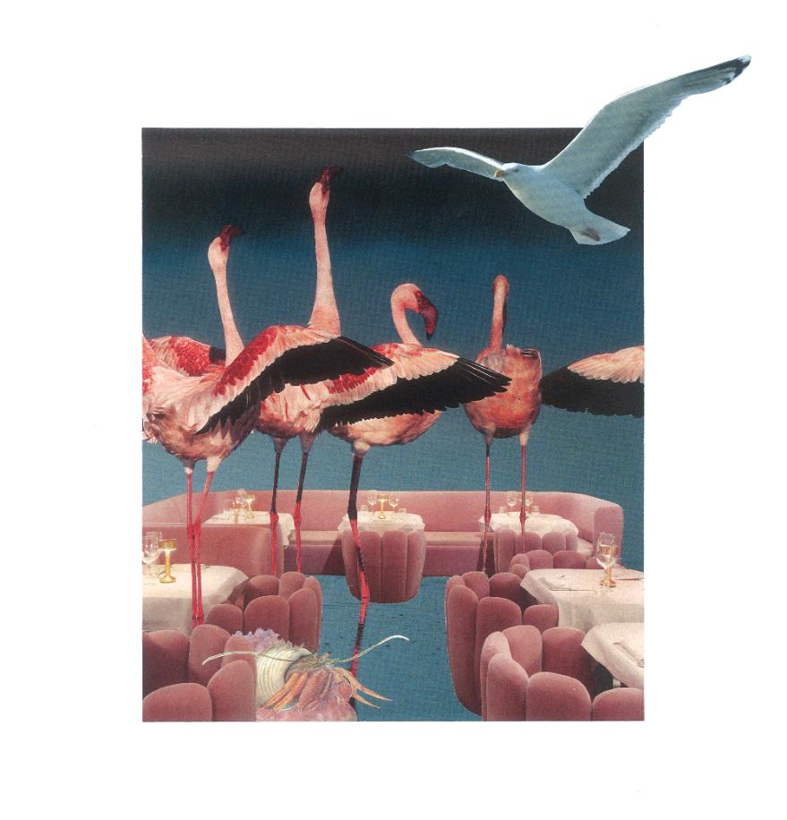 flamingobar