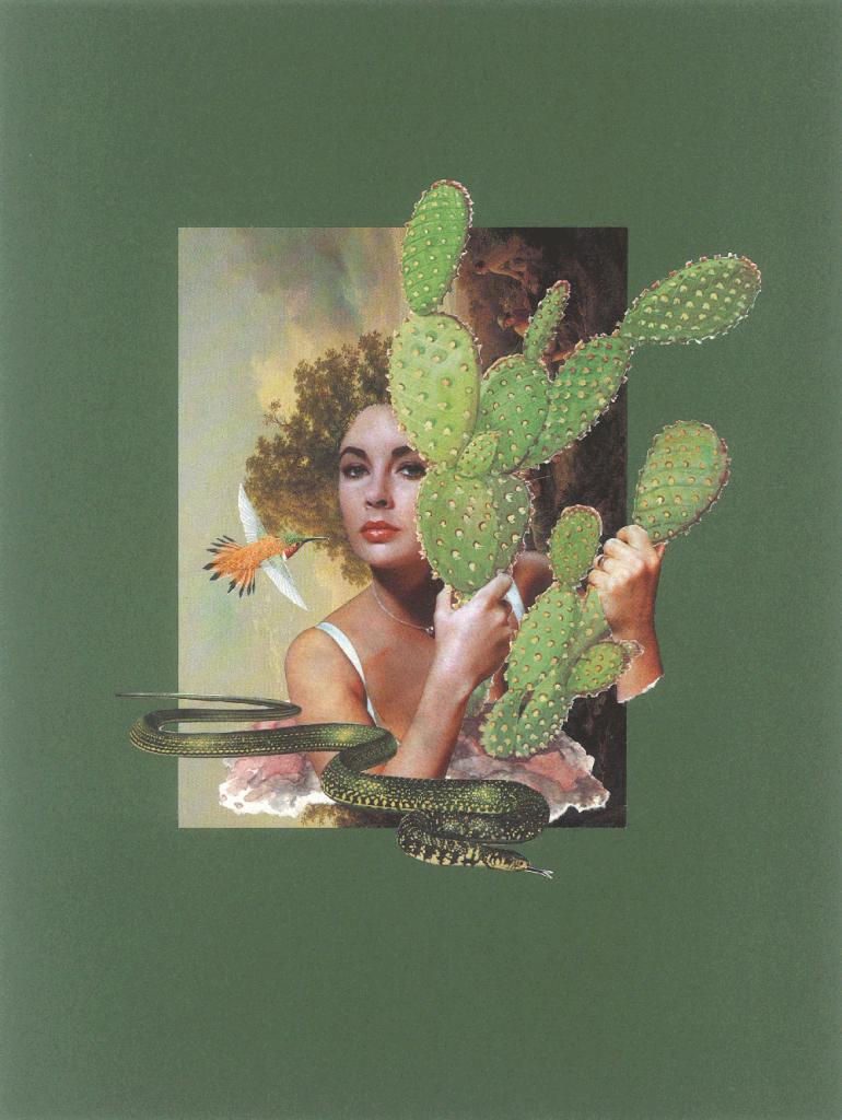 Liz-und-der-Kaktus