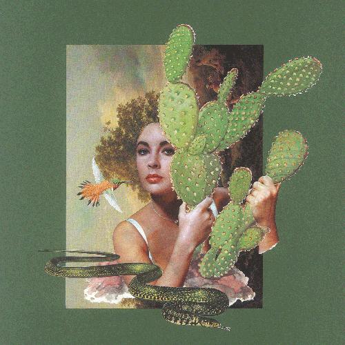 Liz-und-der-Kaktus_thumb
